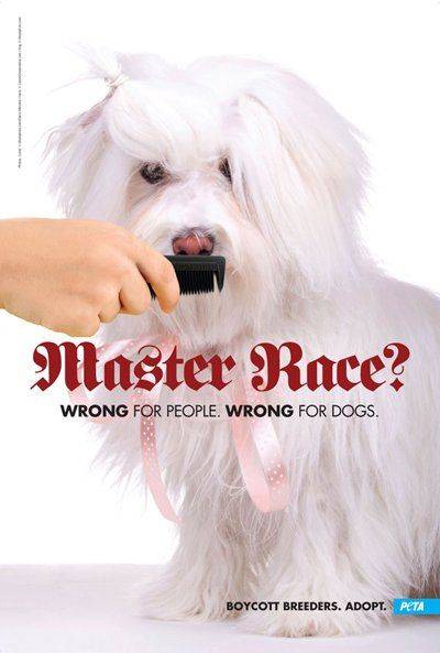 This ad to protest the Crufts Dog Show in the UK also brought Hitler into the mix, white dog with Hitler mustache http://www.businessinsider.com/peta-shocking-controversial-ads-2011-10?op=1