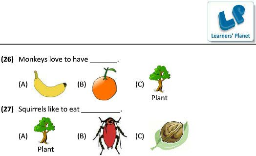 3 Science Worksheets On Eating Habits Of Animals For Kids