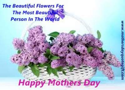 8 Best Mothers Day Flowers Inexpensive Flowers For Mom Happy Mothers Day 2016 Images Wishes Wallpape Lilac Flowers Flowers For Mom Purple Flowers Wallpaper