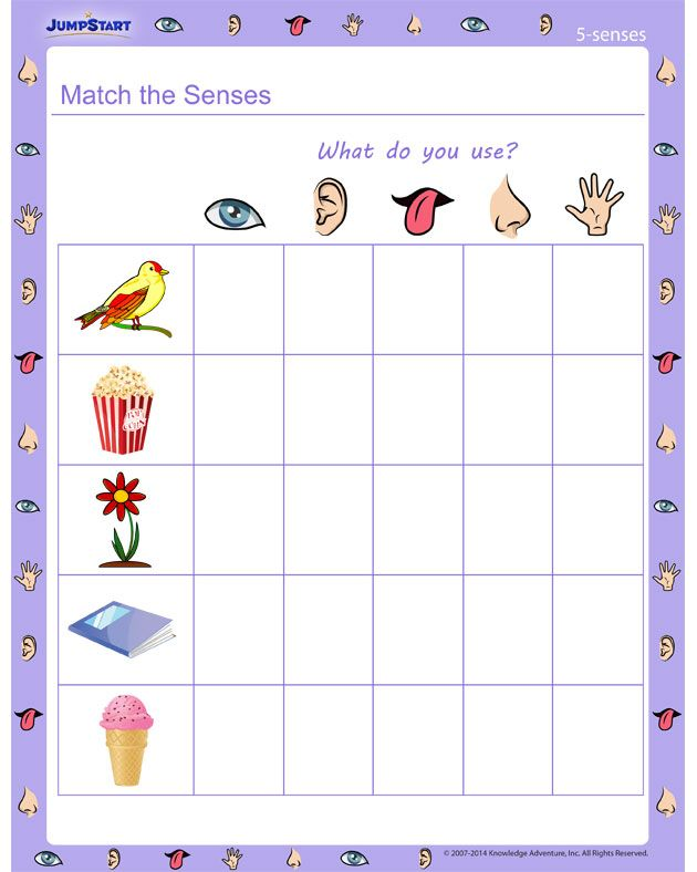 match the senses 5 senses worksheet kiddos five senses worksheet 5 senses worksheet. Black Bedroom Furniture Sets. Home Design Ideas