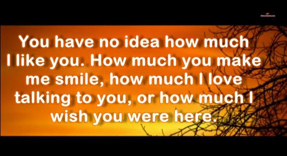 You Have No Idea How Much I Like You You Have No Idea I Like You Wish You Are Here