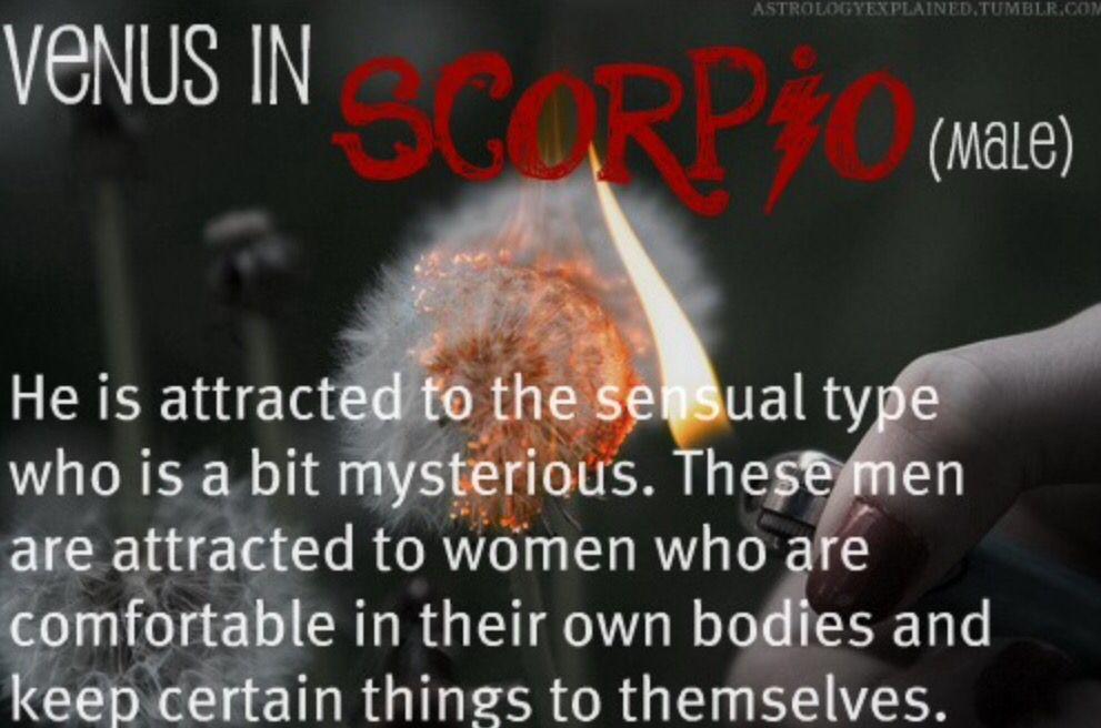 Astrology Explained   Venus in scorpio, Scorpio men