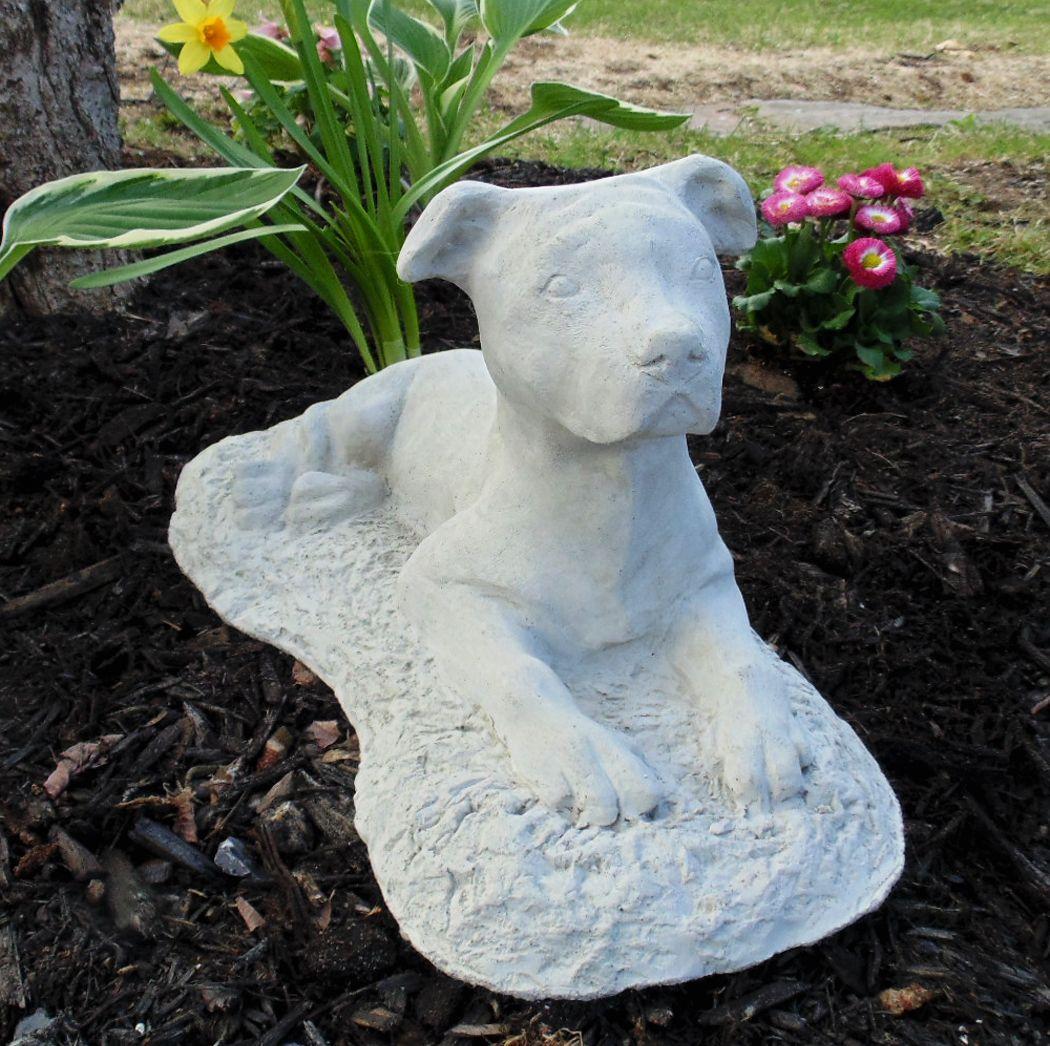 Garden Statues Nh: Pit Bull Garden Statue (Natural Ears)