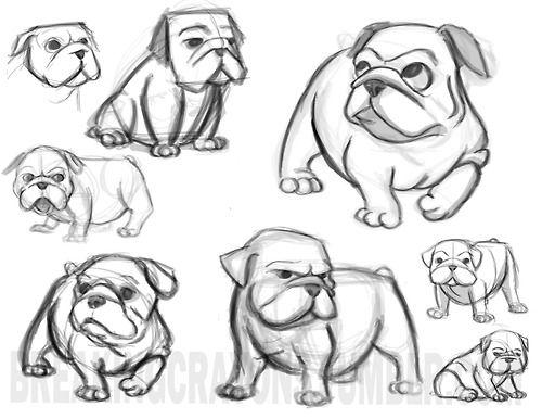 Cute Bulldog Cartoon Drawing Sketch Coloring Page Cartoon