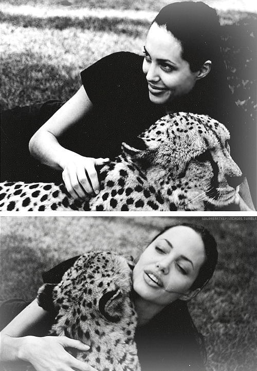 One's a cheetah, one's a lioness.