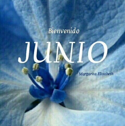 Bienvenido Junio Bienvenido Junio Buenos Días Y Imagenes