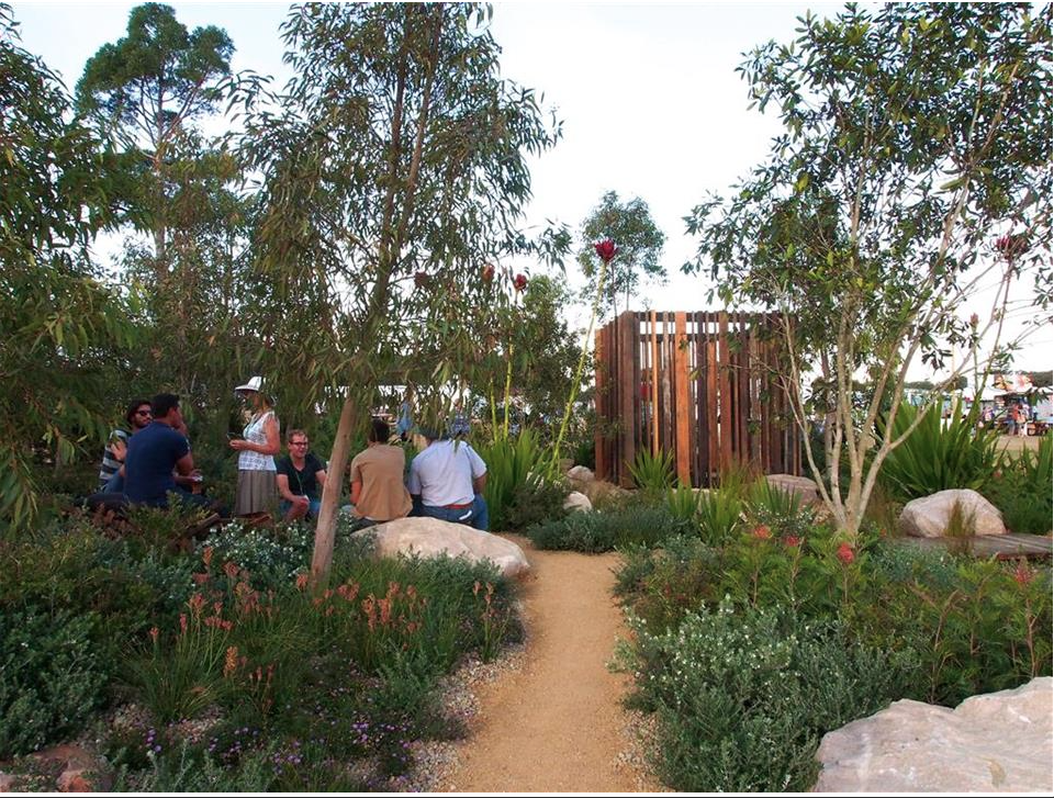 Lovely pathways through native garden beds!