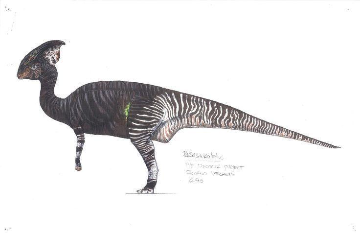 Troodon The Intelligent Dinosaur #historyofdinosaurs Troodon Forbidden Dinosaur History #historyofdinosaurs Troodon The Intelligent Dinosaur #historyofdinosaurs Troodon Forbidden Dinosaur History #historyofdinosaurs