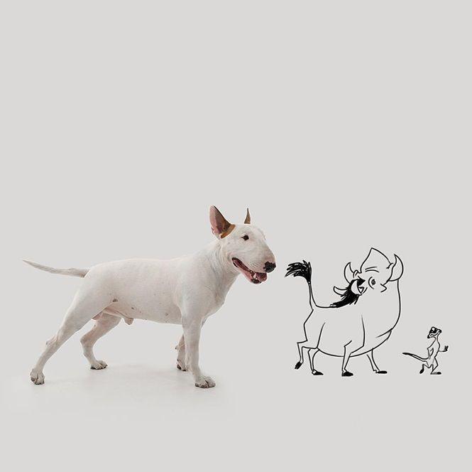 Essa notícia seria terrível, mas ele deu a volta por cima com a ajuda de seu amigo – o fiel companheiro canino Jimmy Choo, o cão da raça Bull Terrier.