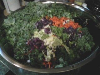 veggies pre-fermented. green and purple kale. carrots. green cabbage. dill.