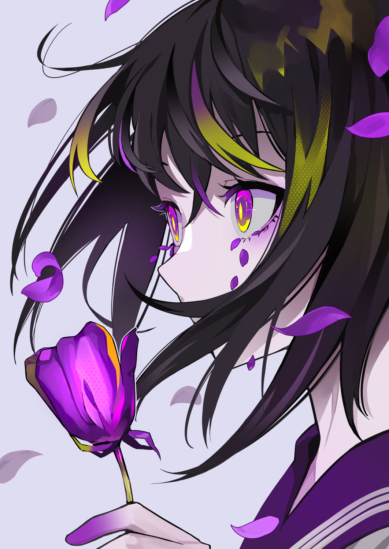 Photo of Purple-L A M