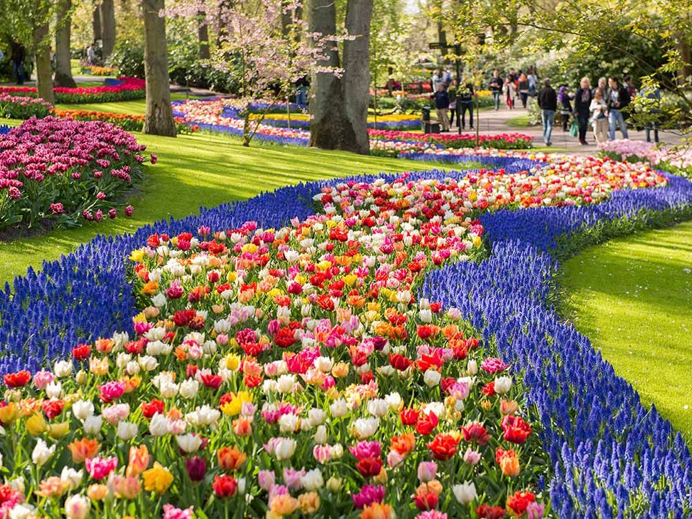 Most beautiful flower gardens in the world keukenhof for Beautiful flower landscapes