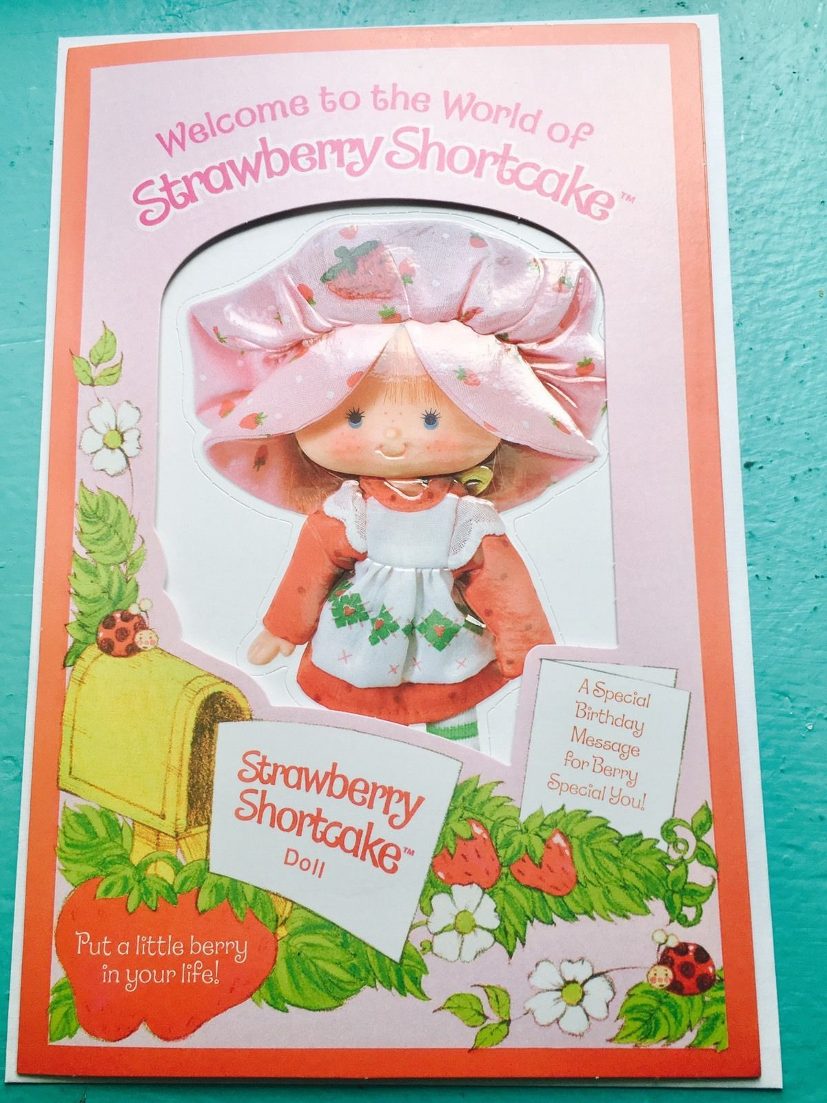 Httpswwwebaycomitmvintage Strawberry Shortcake Pop Up Card Rare172982969252Hash=Item284696A3A4G2Nmaaoswcmzzuocd