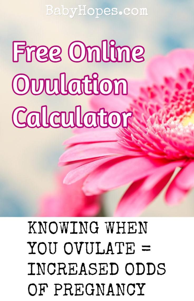 When to have sex when ovulating — pic 4