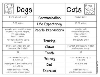 Compare and contrast essay on cats and dogs
