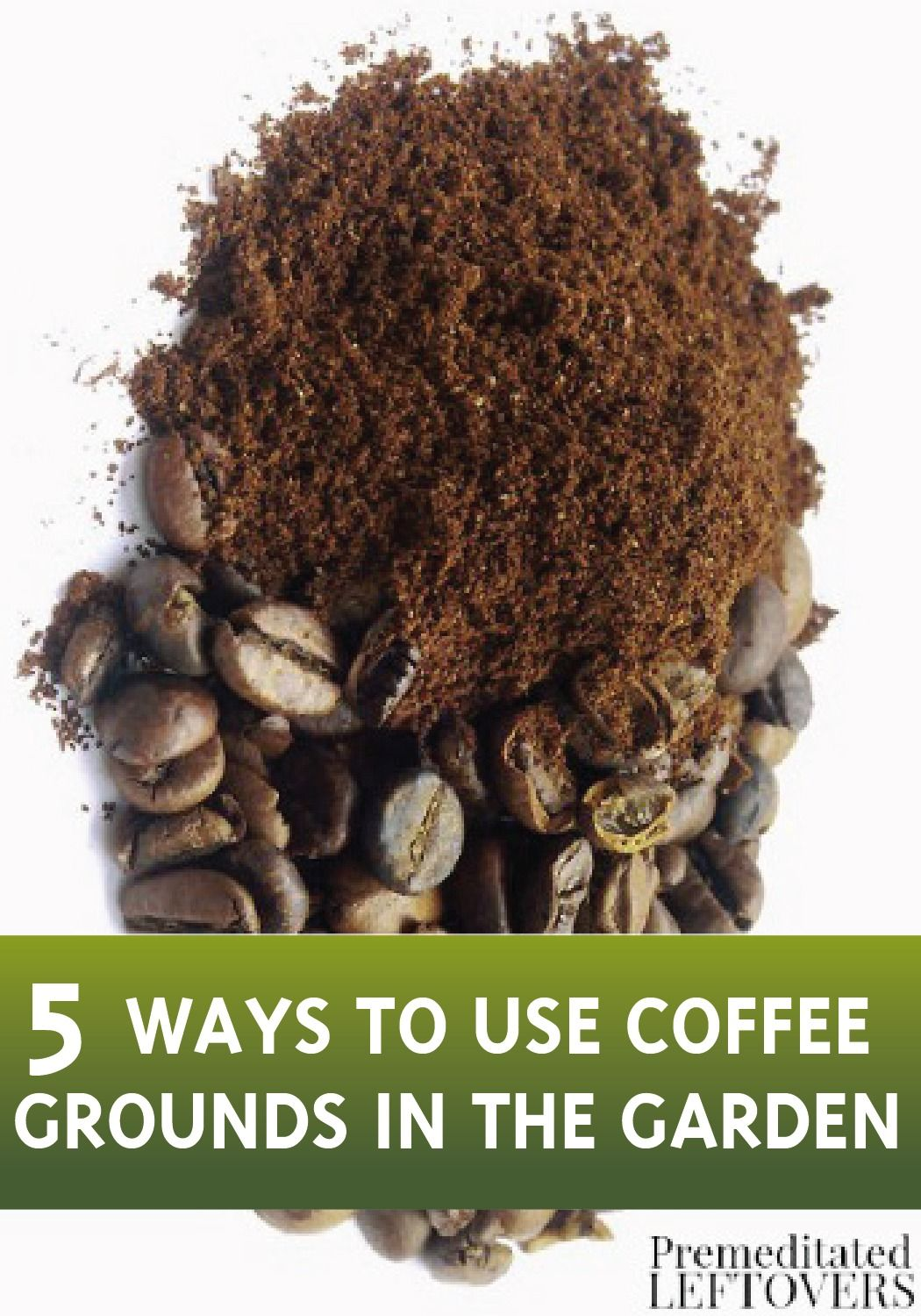 Discover how to recycle your coffee grounds and use them in your ...