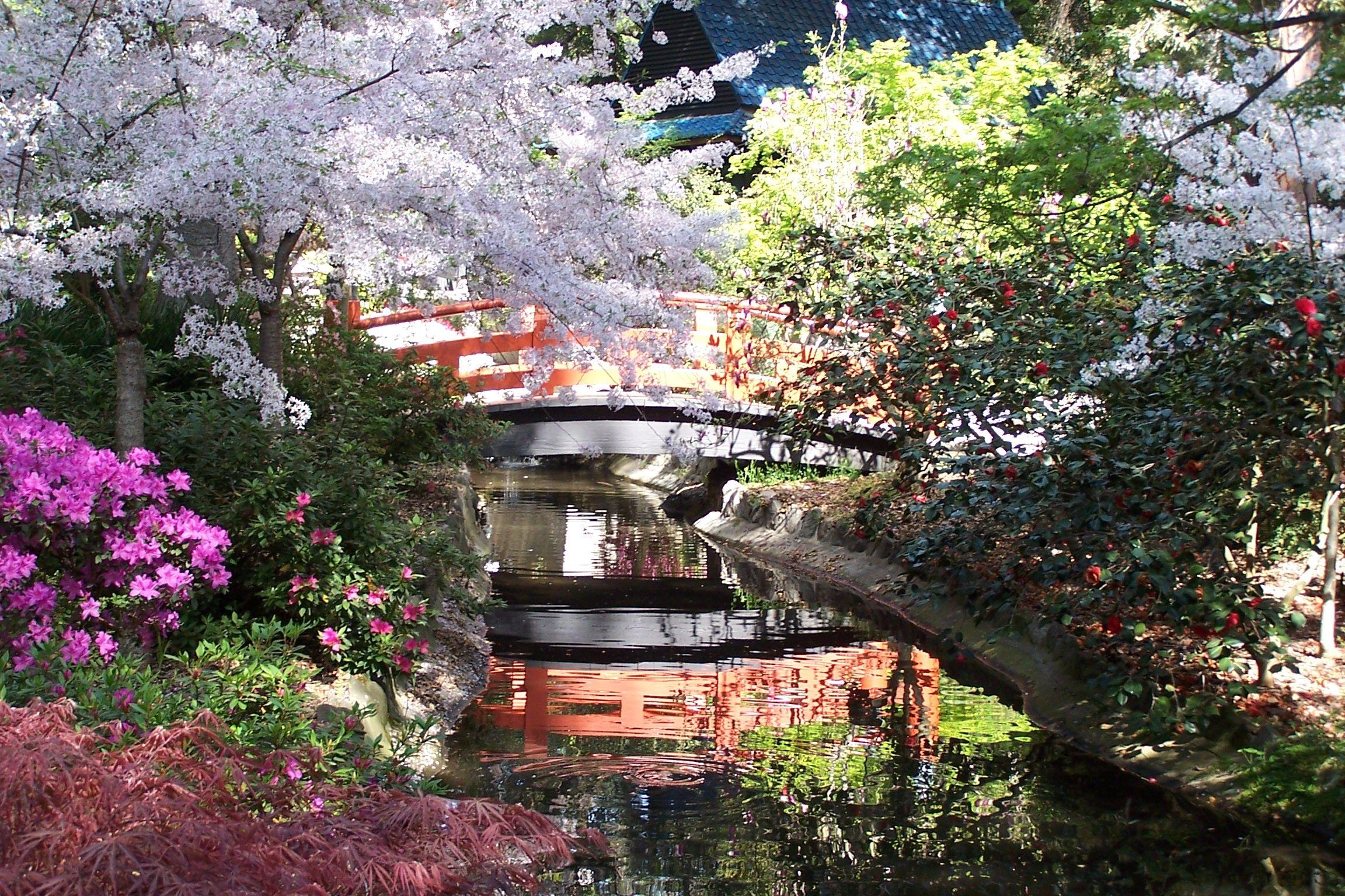 Descanso Gardens in La Cañada Flintridge, CA absolutely