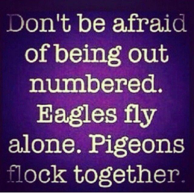 Fly like an Eagle! -_-