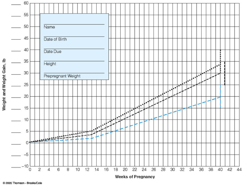 Pregnancy Weight Gain Chart Hobitfullring