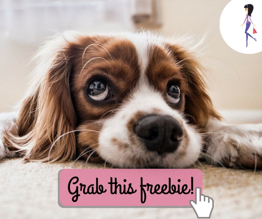 Free Nail Trim for Dogs at Petco Catchy Coupons