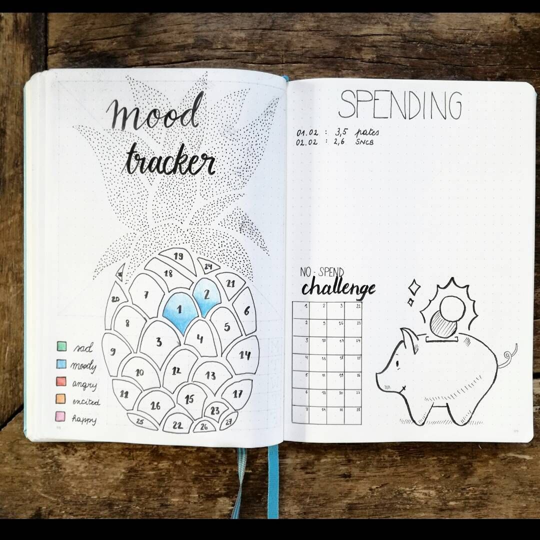Tons of bullet journal tracker ideas to keep track of everything important in your life zen of - Idee tracker bullet journal ...