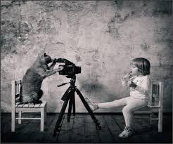 cat art fotografie - Google zoeken