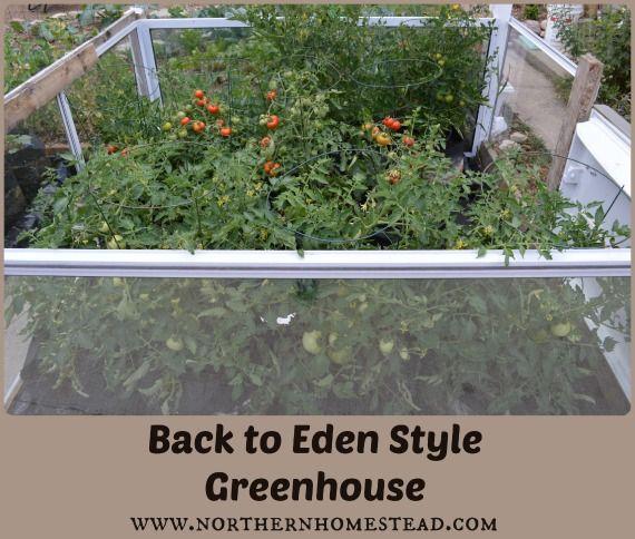 Back to Eden Style Greenhouse | Gardening | Pinterest | Gardens ...
