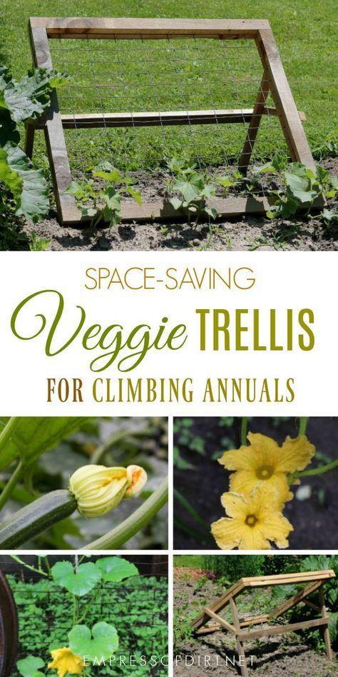 Diy Trellis For Climbing Fruits And Veggies Cucumber 400 x 300