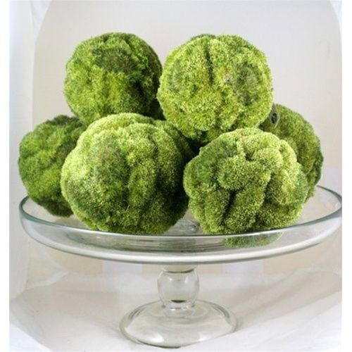 Decorative Moss Balls Gorgeous Decorative Forest Moss Balls To Put In The Turned Wood Bowl And Add Design Decoration