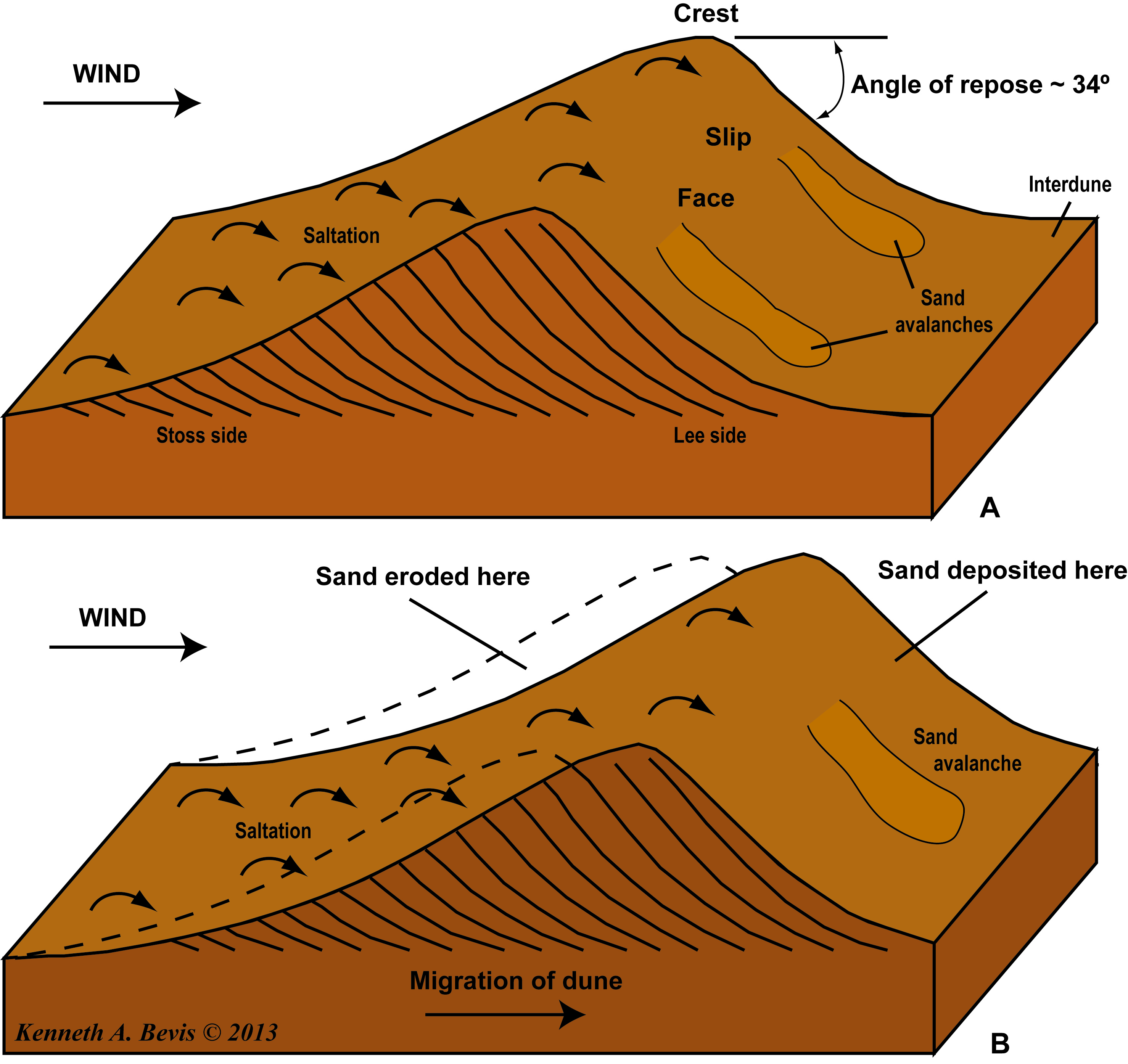 Formation And Propagation Of A Sand Dune An Introduction