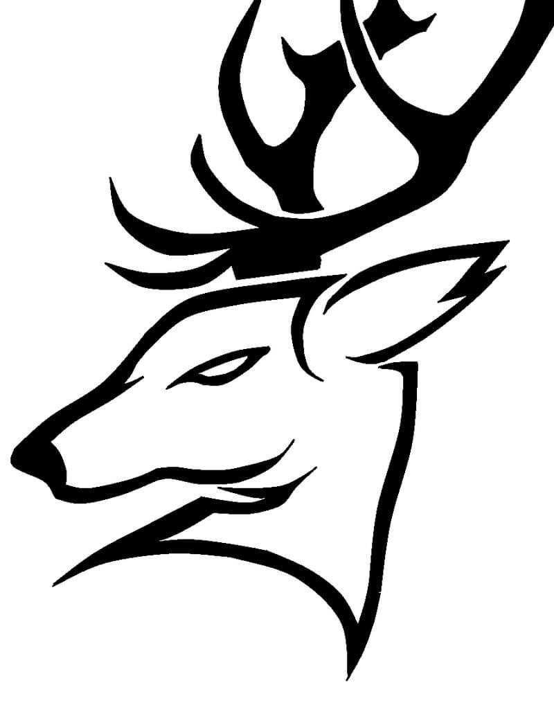 Pin By Angela Della Vella On Disegno Di Cervo In 2020 Deer Tattoo Designs Deer Tattoo Deer Drawing