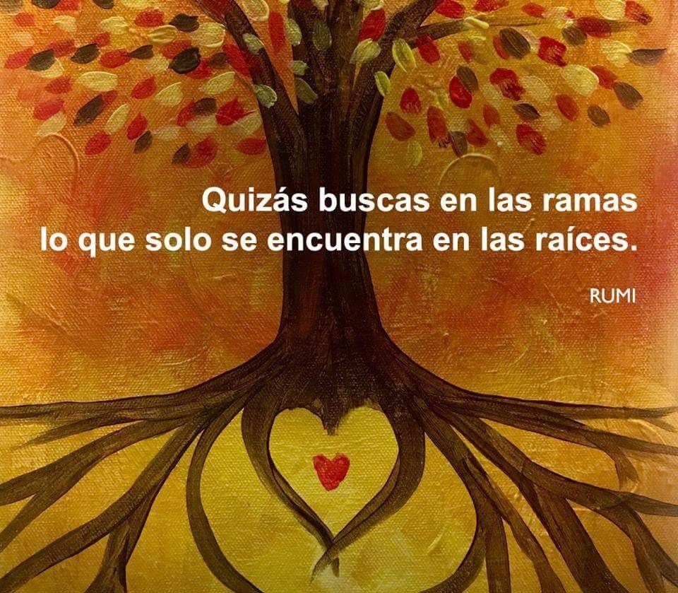 Quizaquizá Rumi Hafiz Kabir En Español Frases De Rumi Frases De Raíces Y Frases De La Vida