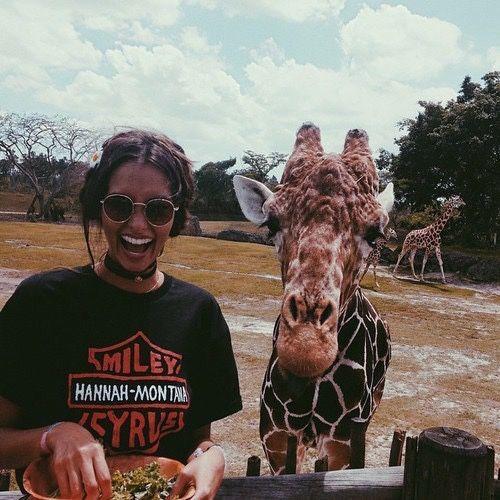adventure | safari | explore | animals | laugh | zoo | hippy | round sunglasses | vintage