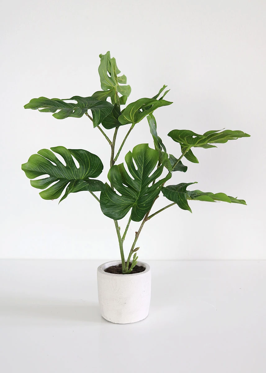 Philodendron Plant In Cement Pot Indoor Fake Plants Afloral Com Artificial Potted Plants Fake Plants Fake Plants Decor