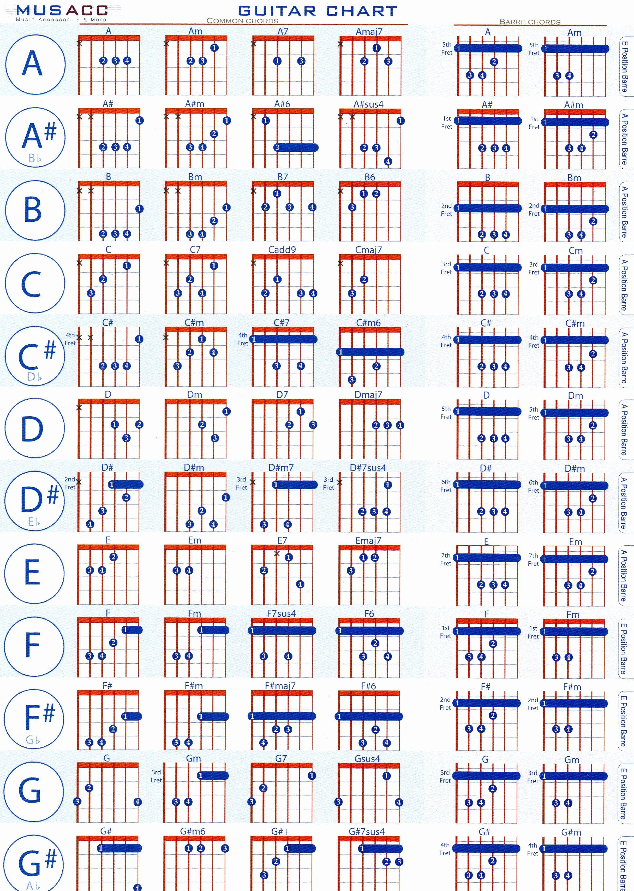 Simple Guitar Chord Chart Pdf Lovely 15 Basic Guitar Chords for ...