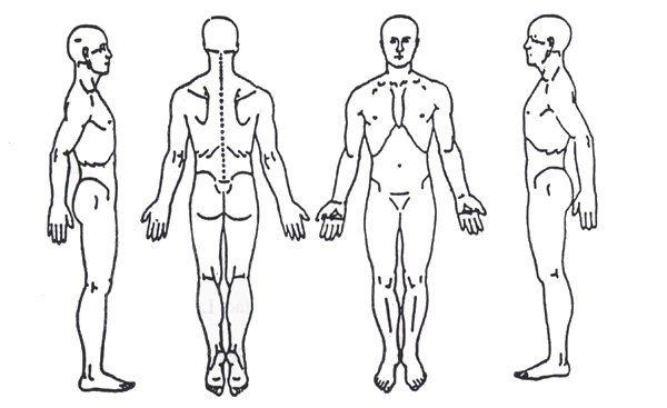 Blank Body Chart Kleowagenaardentistry