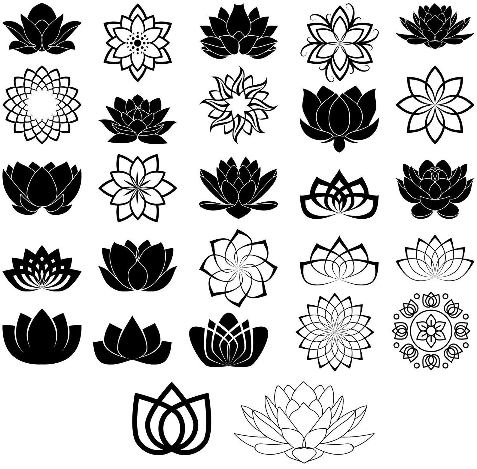 Pin on Omazing Lotuses