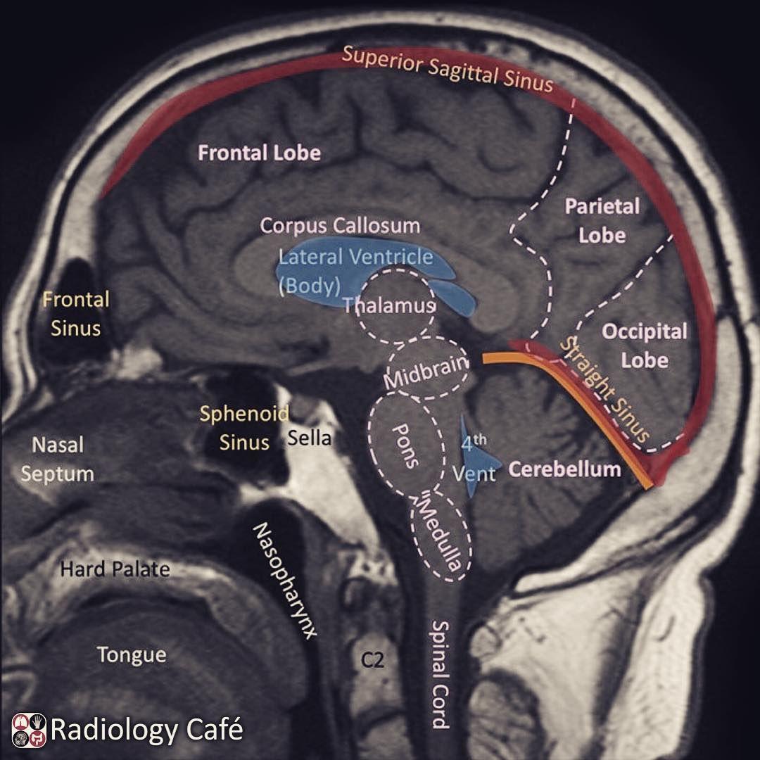 Try The Wonderful Radiology Fundamentals Instructing