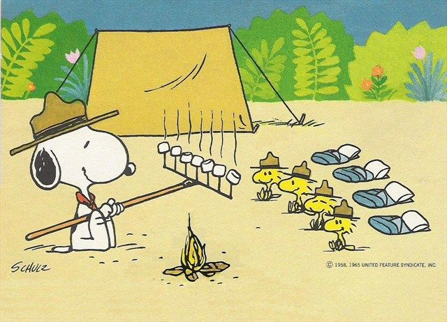 Image result for snoopy boy scout
