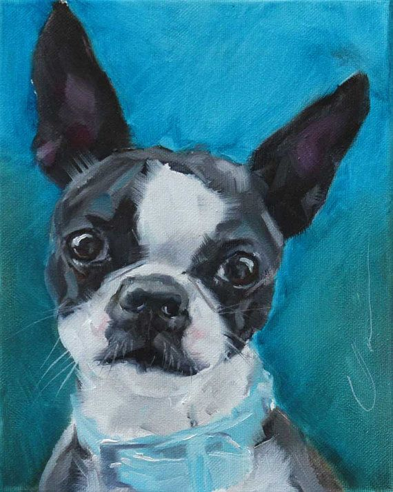 Black and White Curious Boston Terrier Dog, Teal Blue Background, Original Painting by Clair Hartmann