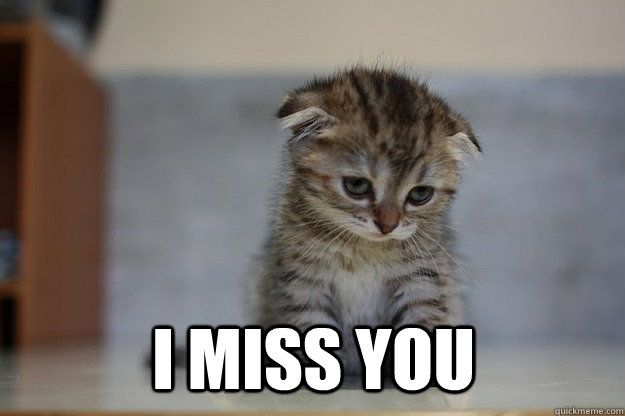 Miss You Meme For Him Funny : Image gallery i miss you meme