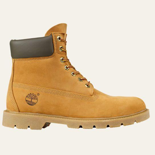 Men's 6 Inch Basic Waterproof Boots wPadded Collar | Timberland US Store