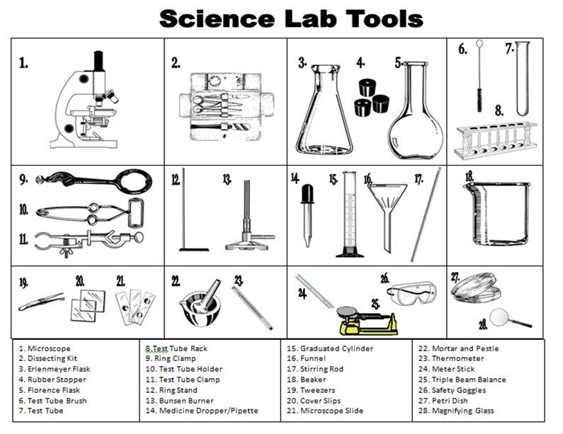Lab Safety Equipment Worksheet Delibertad – Laboratory Equipment Worksheet