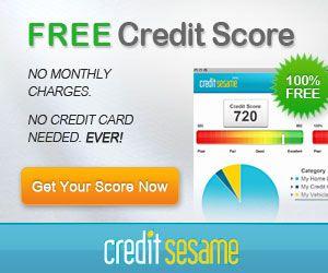 b80547557f9e5306bda2fb1d91bcad28 - How To Get A Free Credit Report In Canada Online