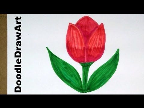 Drawing: How To Draw Cartoon Tulip Flower - Easy Drawing ...
