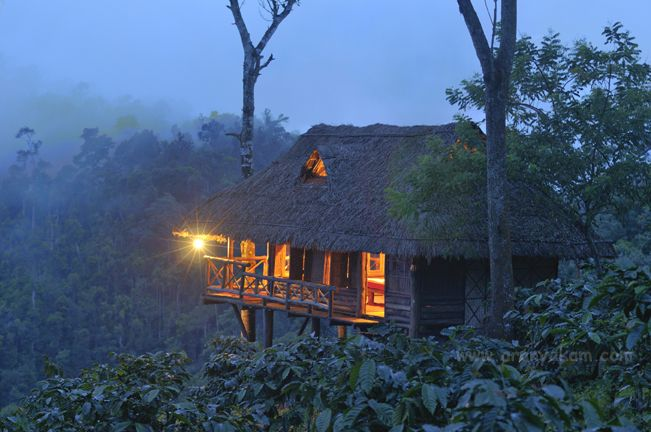 Wayanad India Treehouses Fantasy Homes Honeymoon