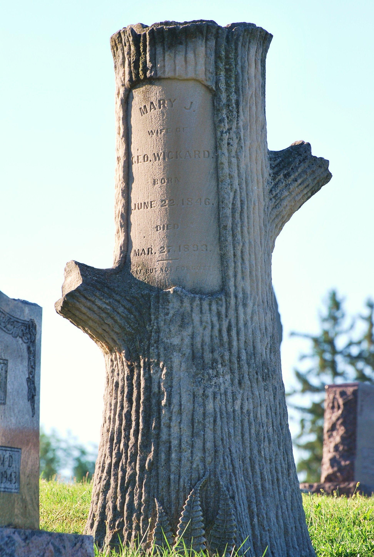 Elwood Indiana Usa Cemetery An Indiana Limestone Tree