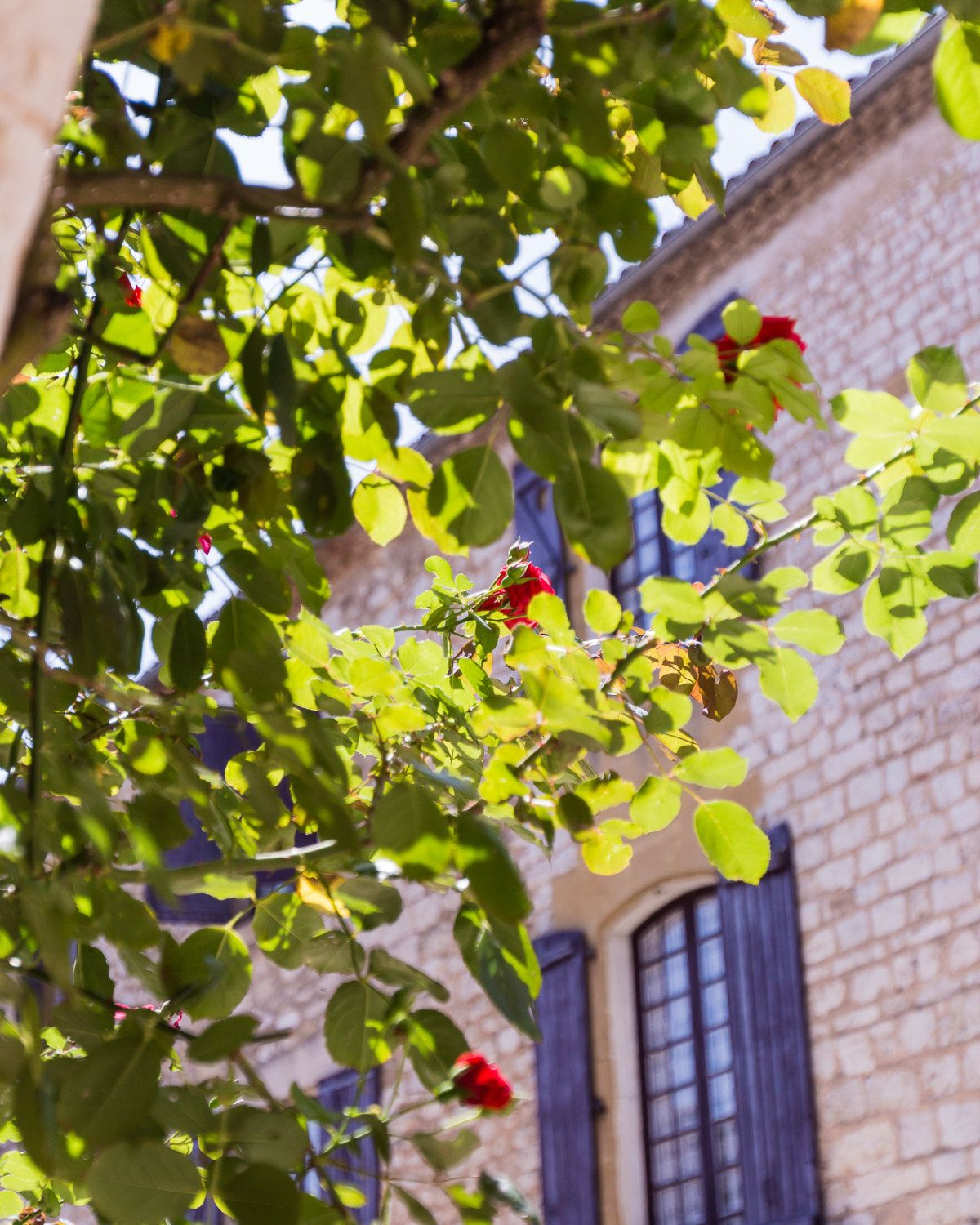 Travel Photography, France Photography, Fine Wall Art, Outside ...