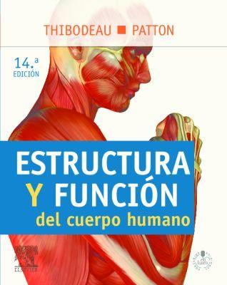 anatomia #fisiologia #medicina   fisiologia   Pinterest   Medicina y ...