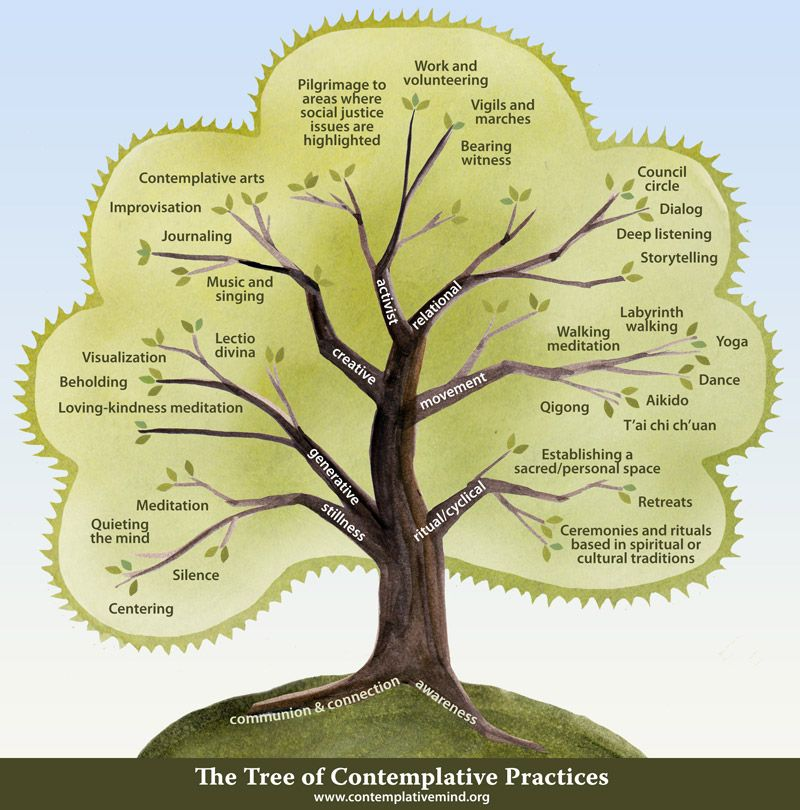 The Tree of Contemplative Practices The Tree illustrates some of the contemplative practices currently in use in secular organizational and academic settings. This is not intended to be a comprehensive list. Below the Tree you will find links to descriptions of many of these practices as well as a more in-depth description of the Tree and image files for downloading.  Some of the practices on the tree link to further information–either on our website, or on Wikipedia.